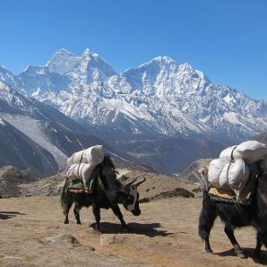Nepalin vaellusmatka: Everest Base Camp (5 545 m)