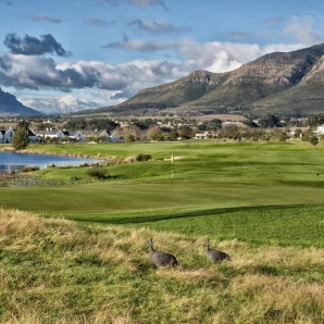 GOLF/Etela-Afrikka/de-zalze-golf-club-11-xl-SA