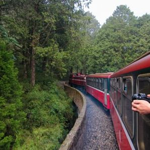 Taiwan_-_My_Taiwan_Tour/Alishan-Forest-Train-2